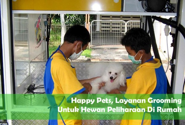 happypets_groom
